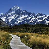 Mt Cook Day Tour (Lunch)
