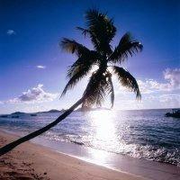 Hilton Fiji Beach Resort & Spa, Denarau